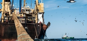 La Subsecretaría de Pesca: un modelo de fracaso nacional