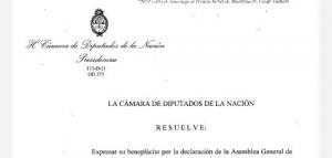La Cámara de Diputados expresó su apoyo a la resolución de la ONU sobre Chagos